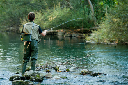 Gentleman Fly Fishing